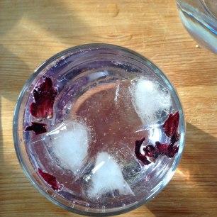 Gin & Tonic à la Fleur d'hibiscus