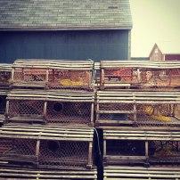 Cages à homard - Portland