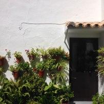 Patio andalous - Vejer de la Fromtera